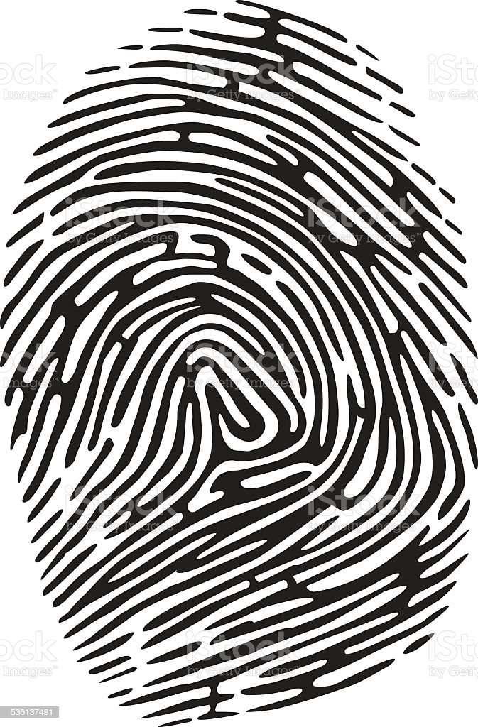 Fingerprint Stock Illustration - Download Image Now - iStock