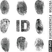 set of vector fingerprints