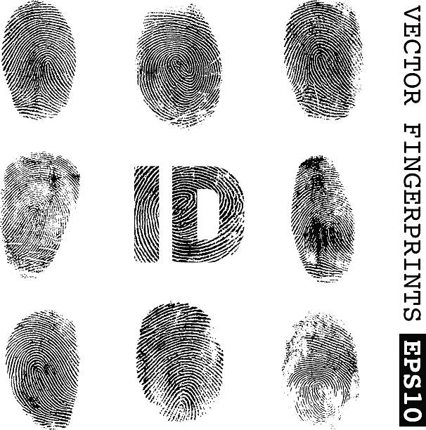 Fingerprints set of vector fingerprints detective stock illustrations