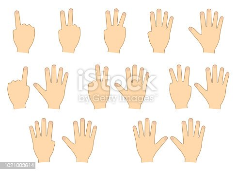 466657402 istock photo Fingers of hands. Counting, education. Set. Vector illustration 1021003614