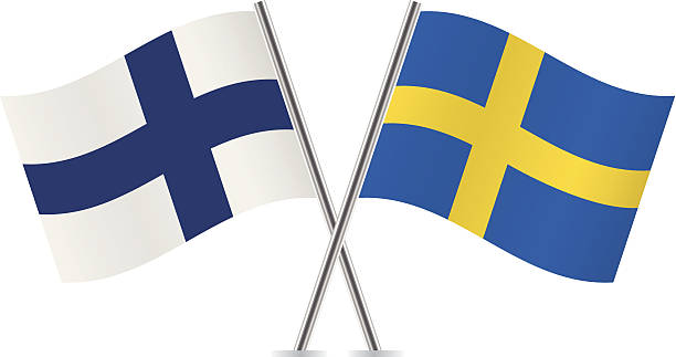 finnish and swedish flags. vector. - finnish flag stock illustrations, clip art, cartoons, & icons