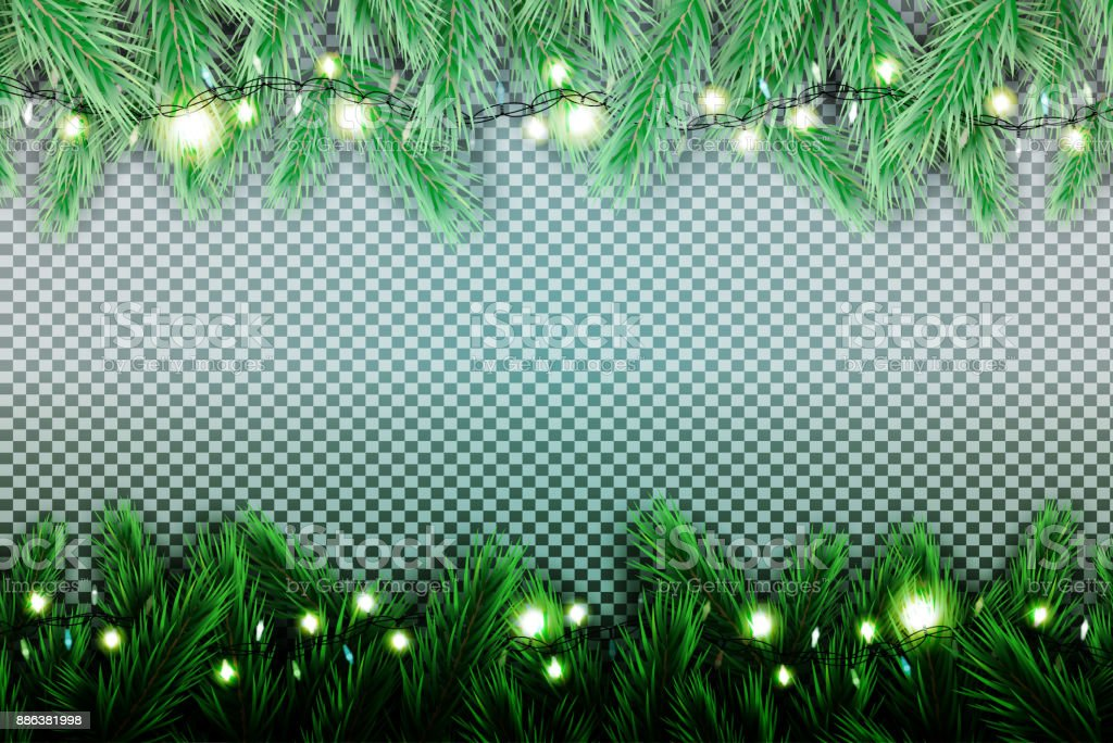 Fir Branch with Neon Lights on Transparent Background. vector art illustration