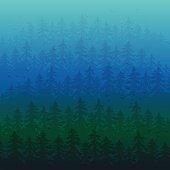 Fir forest in the fog