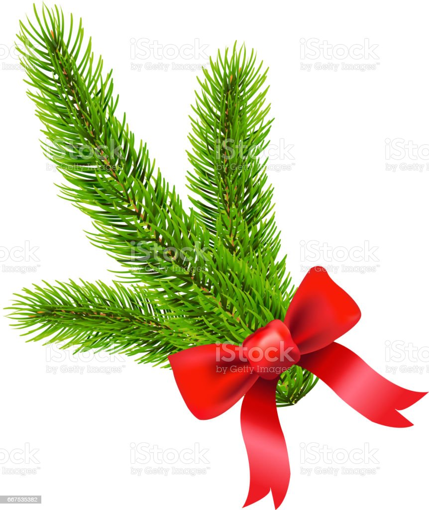Fir Tree Branch fir tree branch - immagini vettoriali stock e altre immagini di albero royalty-free