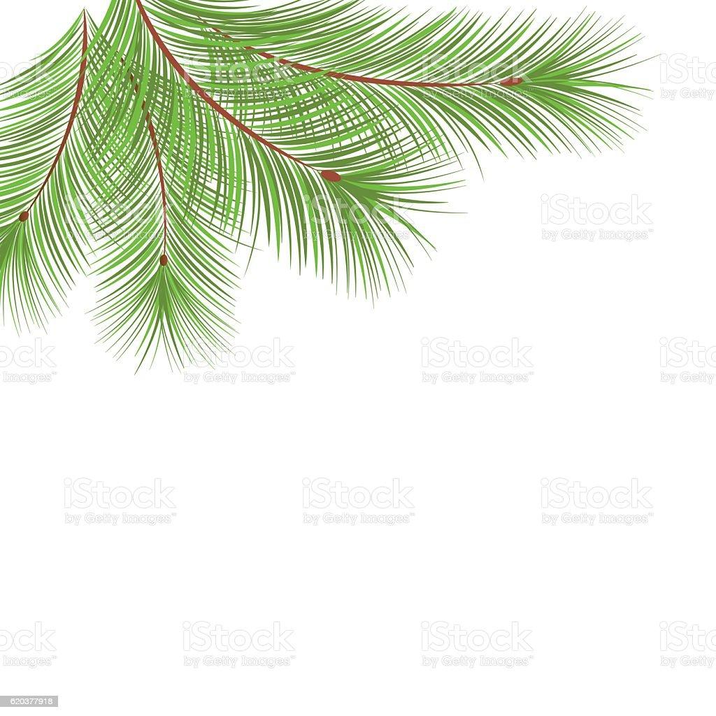 Fir tree branches frame for Christmas decoration fir tree branches frame for christmas decoration - stockowe grafiki wektorowe i więcej obrazów abstrakcja royalty-free