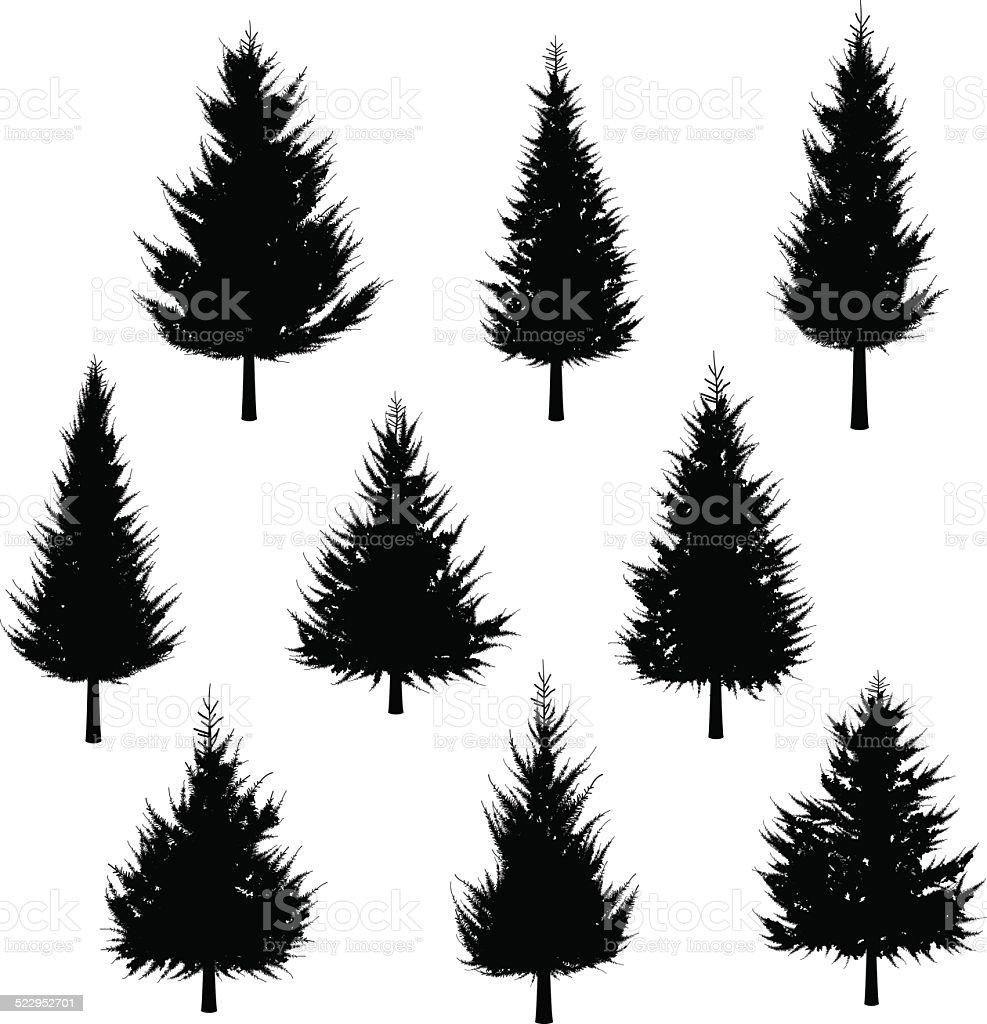 Vector Illustration Tree: Fir Tree Silhouettefor Christmas Tree Stock Illustration