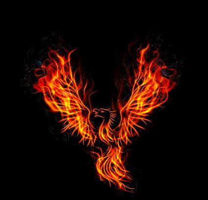 Fire burning Phoenix Bird with black background