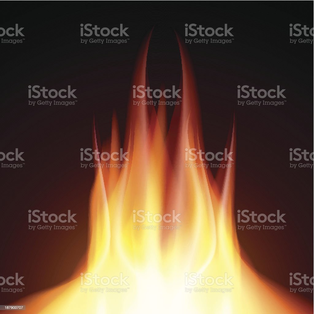 Fire flame burn on black background royalty-free stock vector art