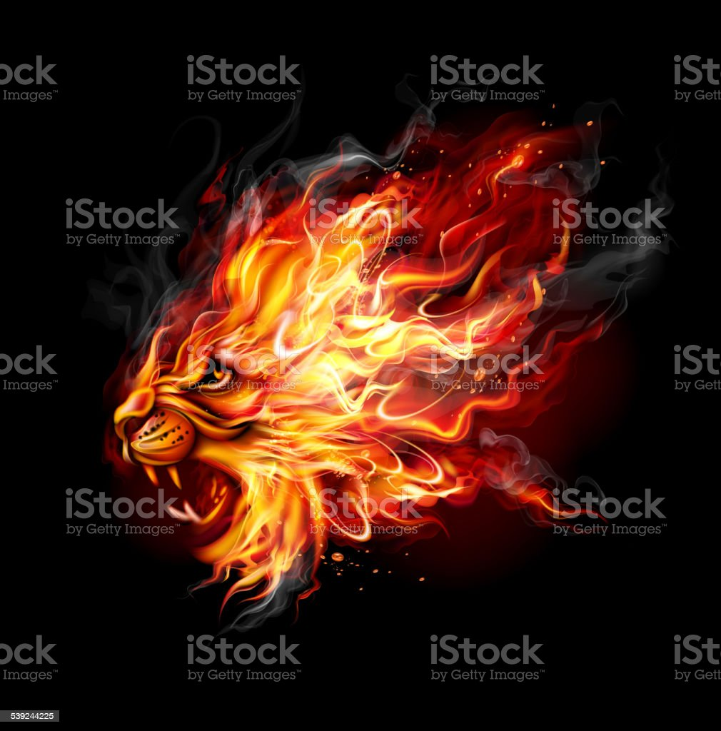 Fire Lion royalty-free fire lion stock vector art & more images of africa
