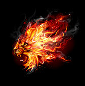 Fire Lion  Isolated on black. Editable EPS 10