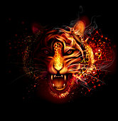 Fire tiger. EPS 10 with blending colors effects.