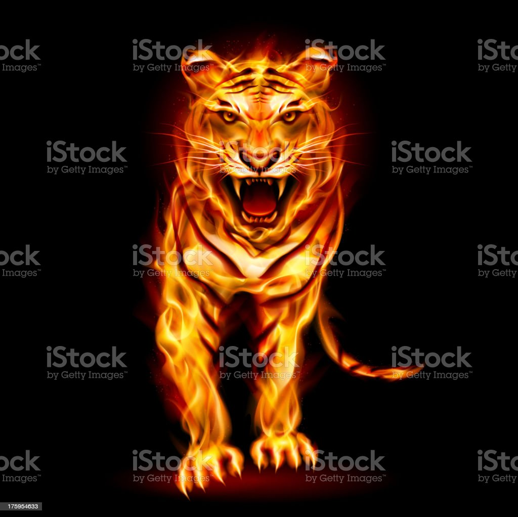 Fire tiger royalty-free stock vector art