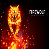 Aggressive Fire Woolf in Sparks. Concept Image of a Red Wolf and Flame on a Black Background