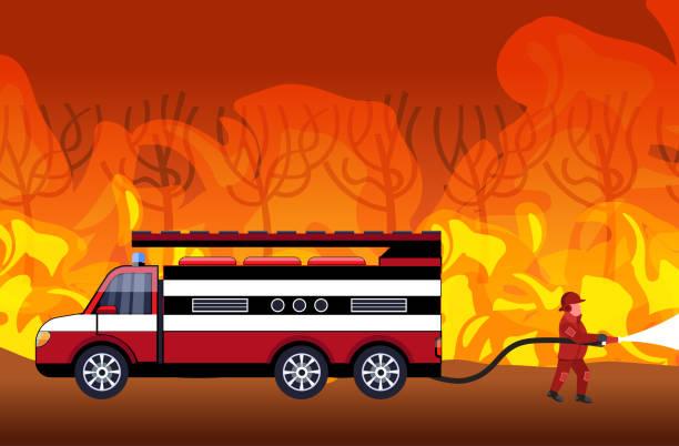 bildbanksillustrationer, clip art samt tecknat material och ikoner med brandman släckning farlig löpeld i australien brandman sprutning vatten från brandbil fighting bushfire brandsläckning naturkatastrof concept intensiv orange flames horisontell - skog brand
