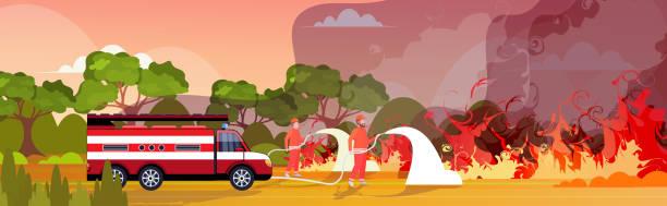 bildbanksillustrationer, clip art samt tecknat material och ikoner med brandmän släckning farlig löpeld i australien brandmännen sprutar vatten från brandbil kämpar bushfire släcksystem naturkatastrof concept intensiv orange flames horisontell - skog brand