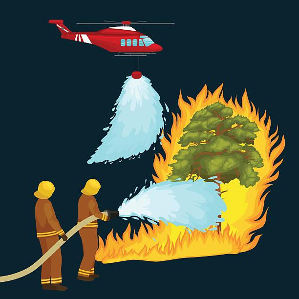 bildbanksillustrationer, clip art samt tecknat material och ikoner med firefighters in protective clothing and helmet with helicopter extinguish  water - skog brand