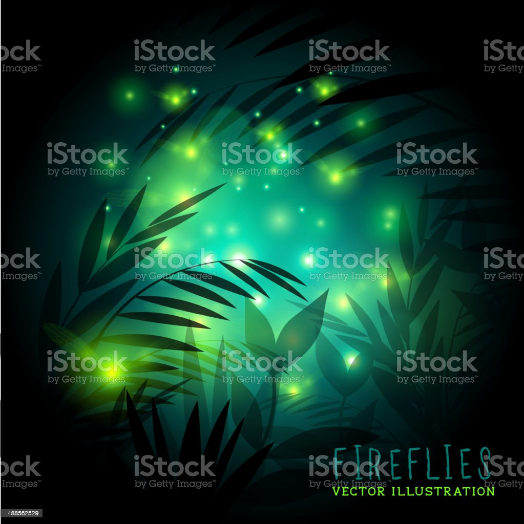 Fireflies At Night vector art illustration