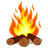 Firewood burning, camp fire on a white background.
