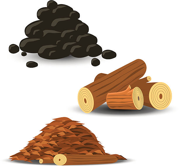 brennholz und kohle und holz-chips - buchenholz stock-grafiken, -clipart, -cartoons und -symbole