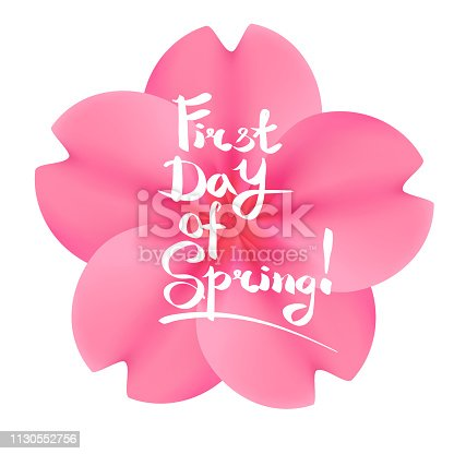 First day of spring lettering. Realistic pink sakura flower on a white background.