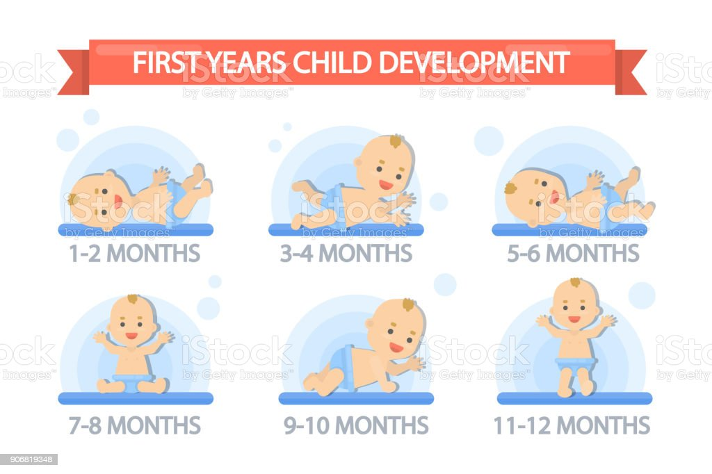 First year child development. vector art illustration