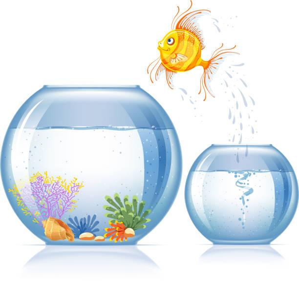fisch und aquarium - fischglas stock-grafiken, -clipart, -cartoons und -symbole