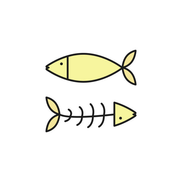 Fish And Bones Colored Outline Icon Element Of Food For Mobile Concept Web