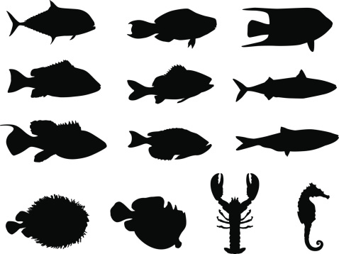 Fish and sea life silhouettes ; made in Adobe Illustrator