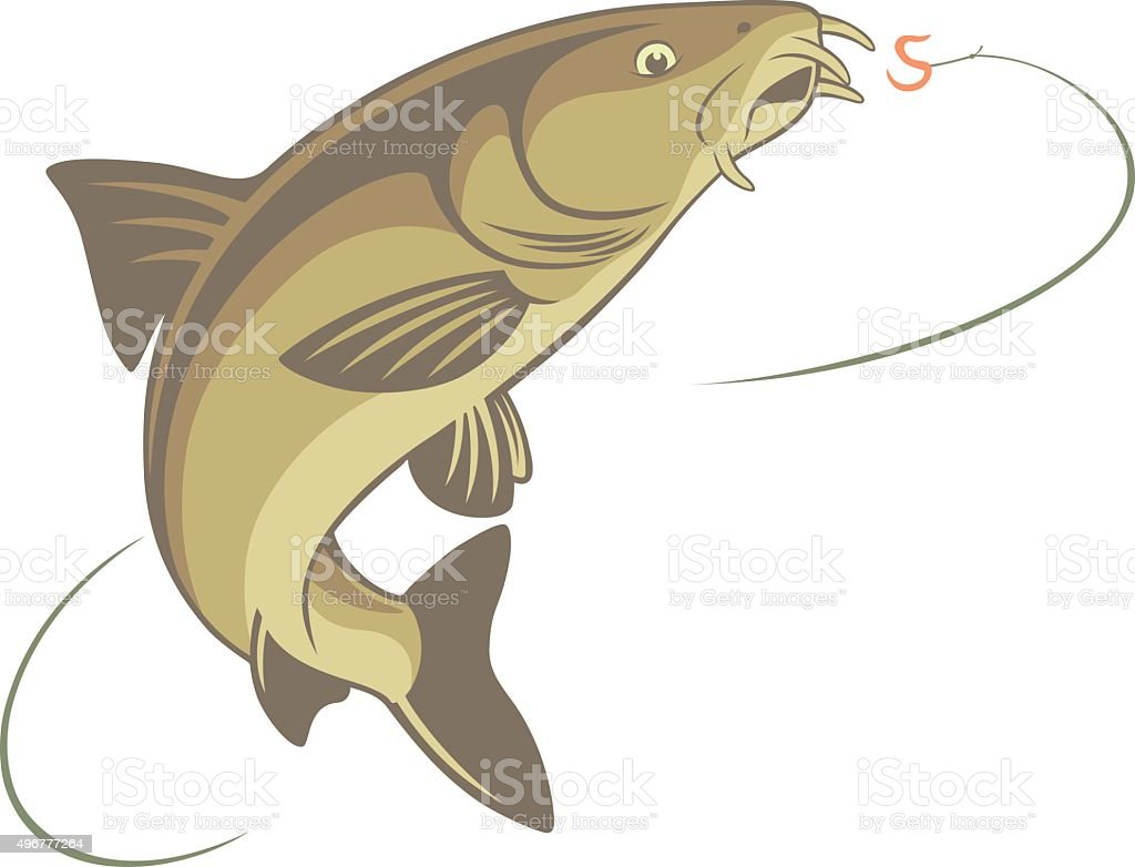 fish barbel vector art illustration