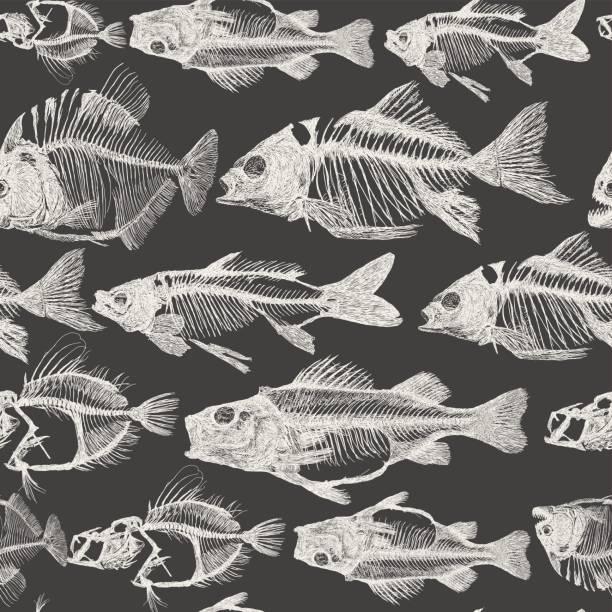 fish bone repeat pattern - animal skeleton stock illustrations