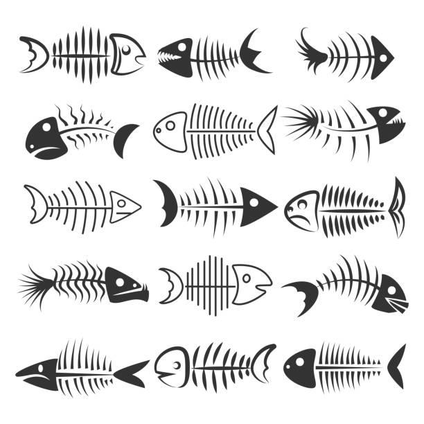 fish bones silhouettes - animal bone stock illustrations