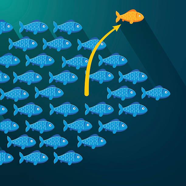 fisch freiheit von schwarm. unternehmer konzept - einzelnes tier stock-grafiken, -clipart, -cartoons und -symbole