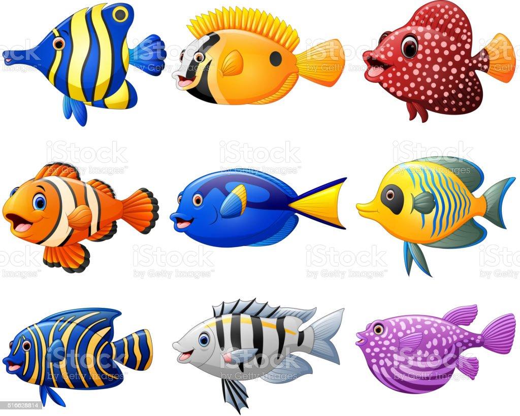 Ilustración De Conjunto De Dibujos Animados De Pescado Y