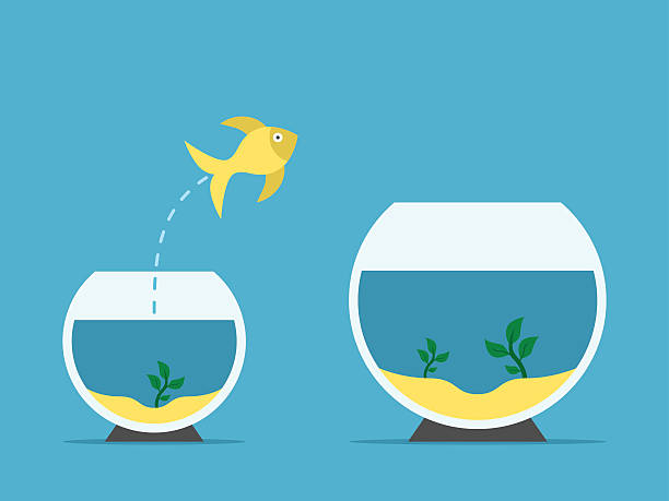 Fish changing aquarium vector art illustration