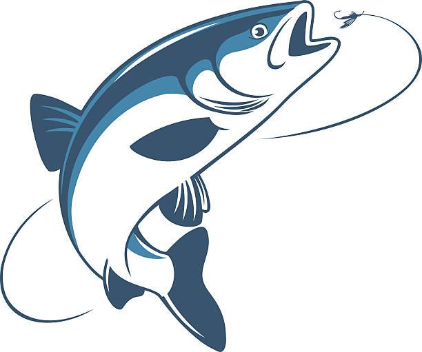 illustrazioni stock, clip art, cartoni animati e icone di tendenza di pesce chub - trout