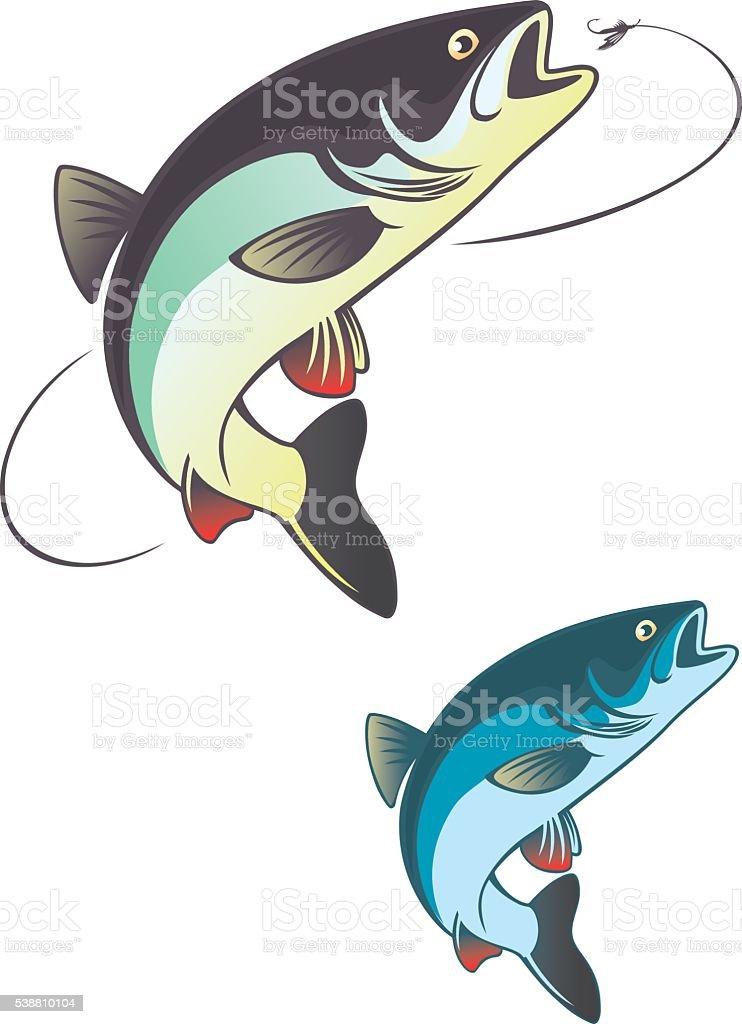 fish chub vector art illustration