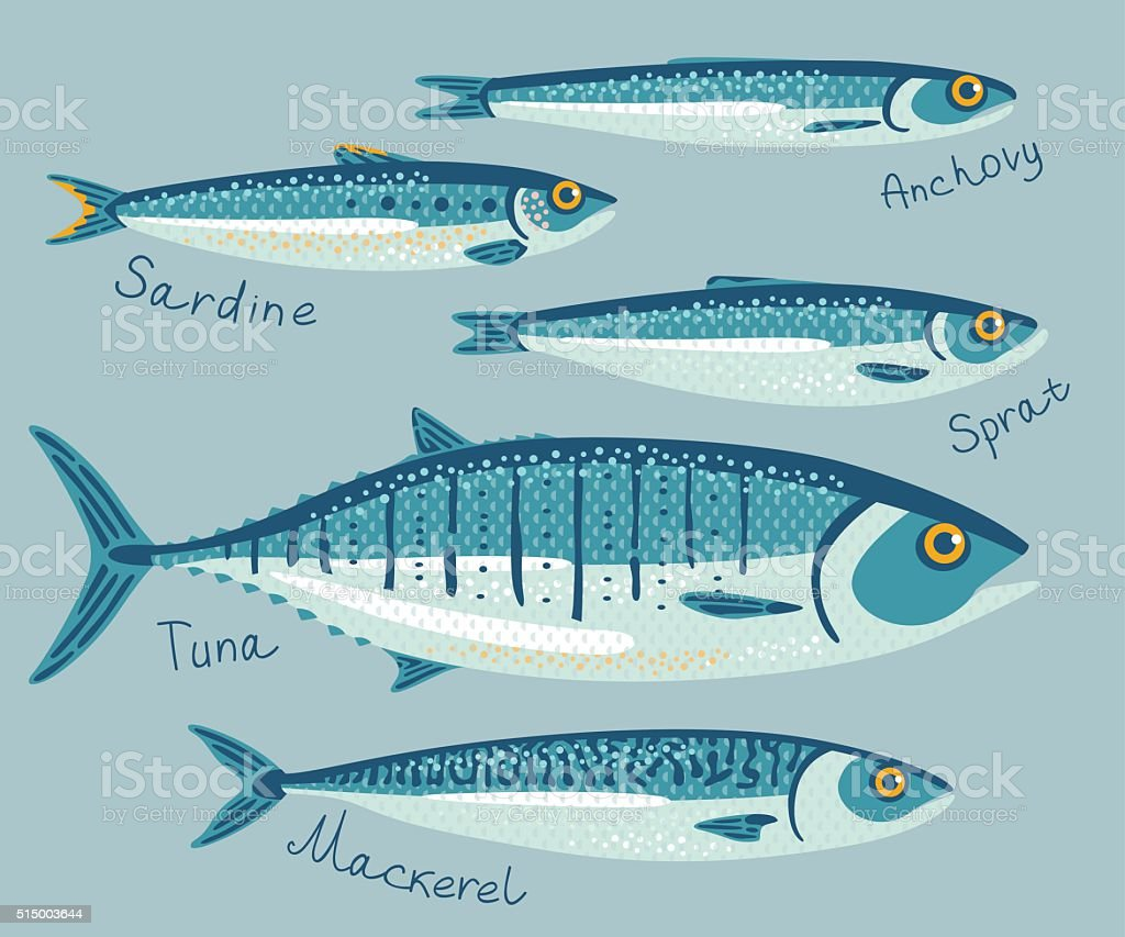 Fish collection for conservation. vector art illustration