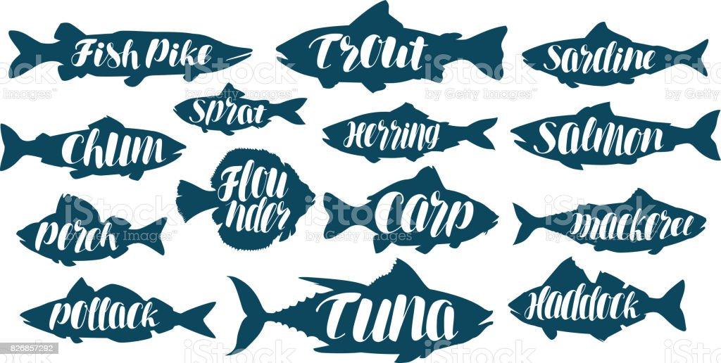 Fisch, Sammlung Beschriftungen oder Logos. Meeresfrüchte, Essen, Fischen, Angeln Set Icons. Handgeschriebene Schrift, Kalligraphie-Vektor-illustration – Vektorgrafik