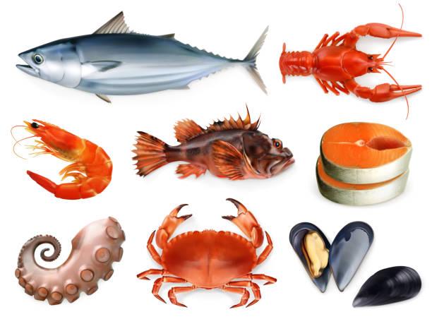 ilustraciones, imágenes clip art, dibujos animados e iconos de stock de peces, cangrejos, mejillones, pulpo. conjunto de iconos vectoriales 3d. comida de mar, estilo realismo - comida cruda