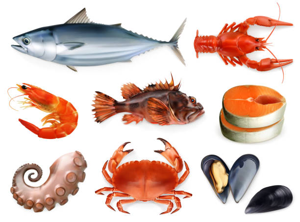 ilustrações, clipart, desenhos animados e ícones de peixes, lagostas, mexilhões, polvo. 3d icon set vector. frutos do mar, o estilo do realismo - alimento cru