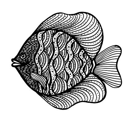 Wels Catfish Stock Illustrations – 39 Wels Catfish Stock Illustrations,  Vectors & Clipart - Dreamstime