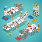 Fish Farming Industry with Conveyor and Workers. Vector isometric illustration