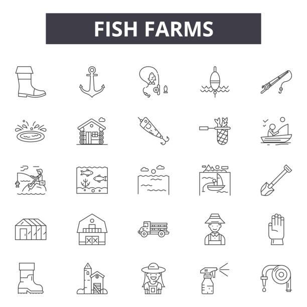 ilustrações de stock, clip art, desenhos animados e ícones de fish farms line icons for web and mobile design. editable stroke signs. fish farms  outline concept illustrations - aquacultura