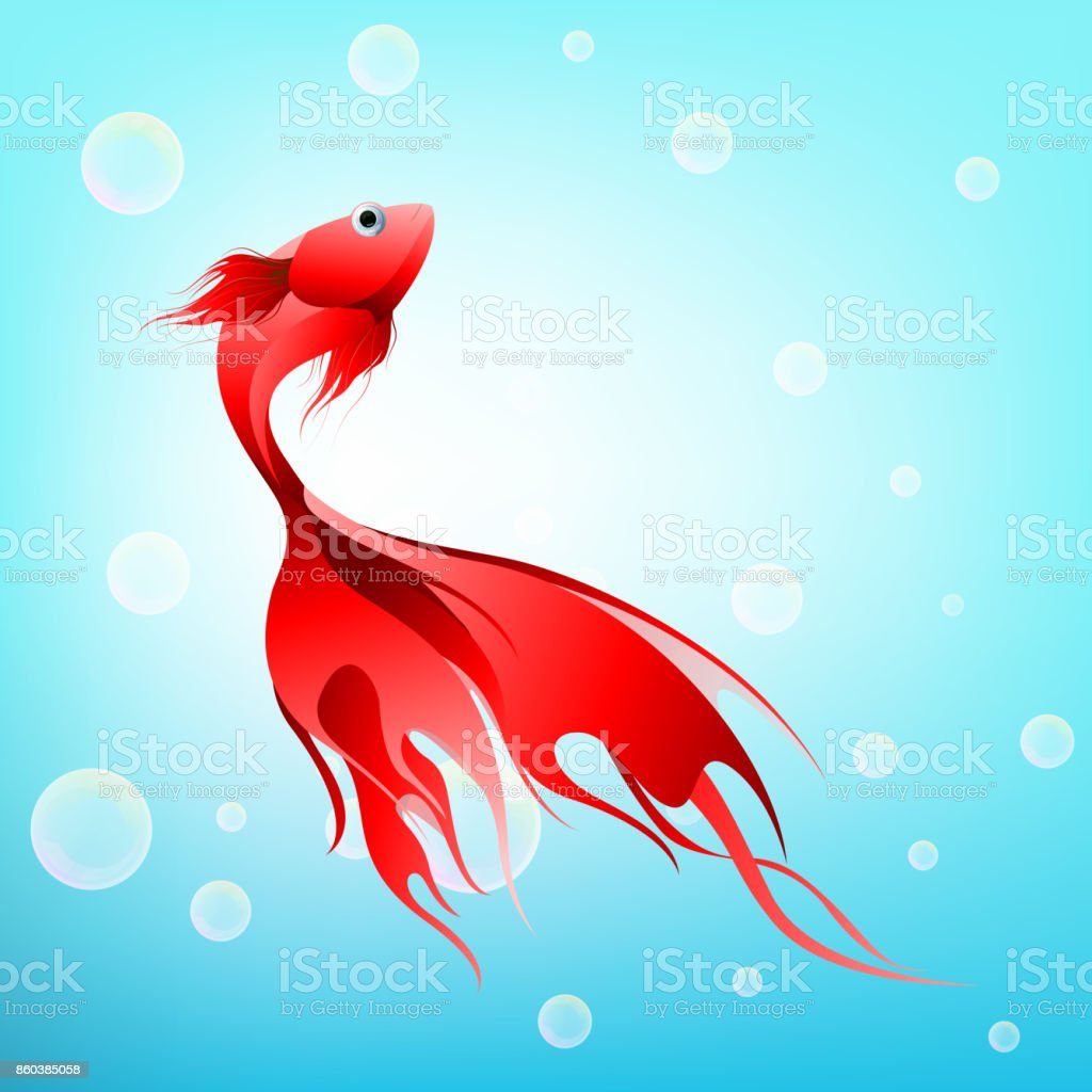 Fish Graphic Design Red Color Abstract Style Isolated On Bubble In ...
