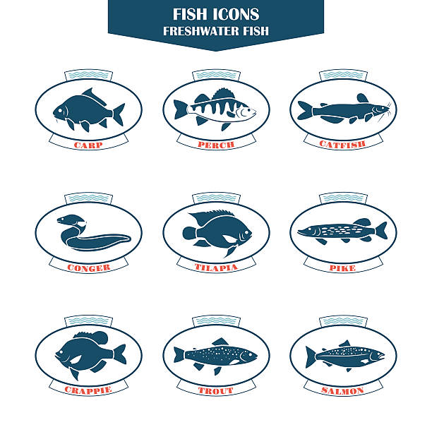 Fish icons in vector Fish icons. Can be used for restaurants, menu design, internet pages design, in the fishing industry, commercial pike fish stock illustrations