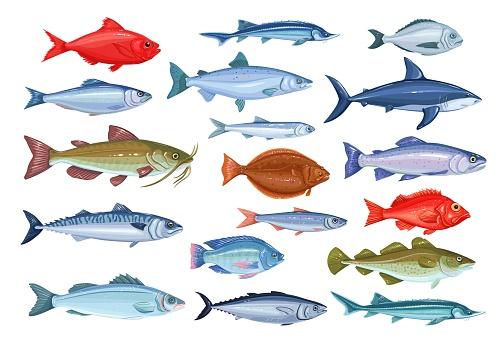Fish icons, seafood