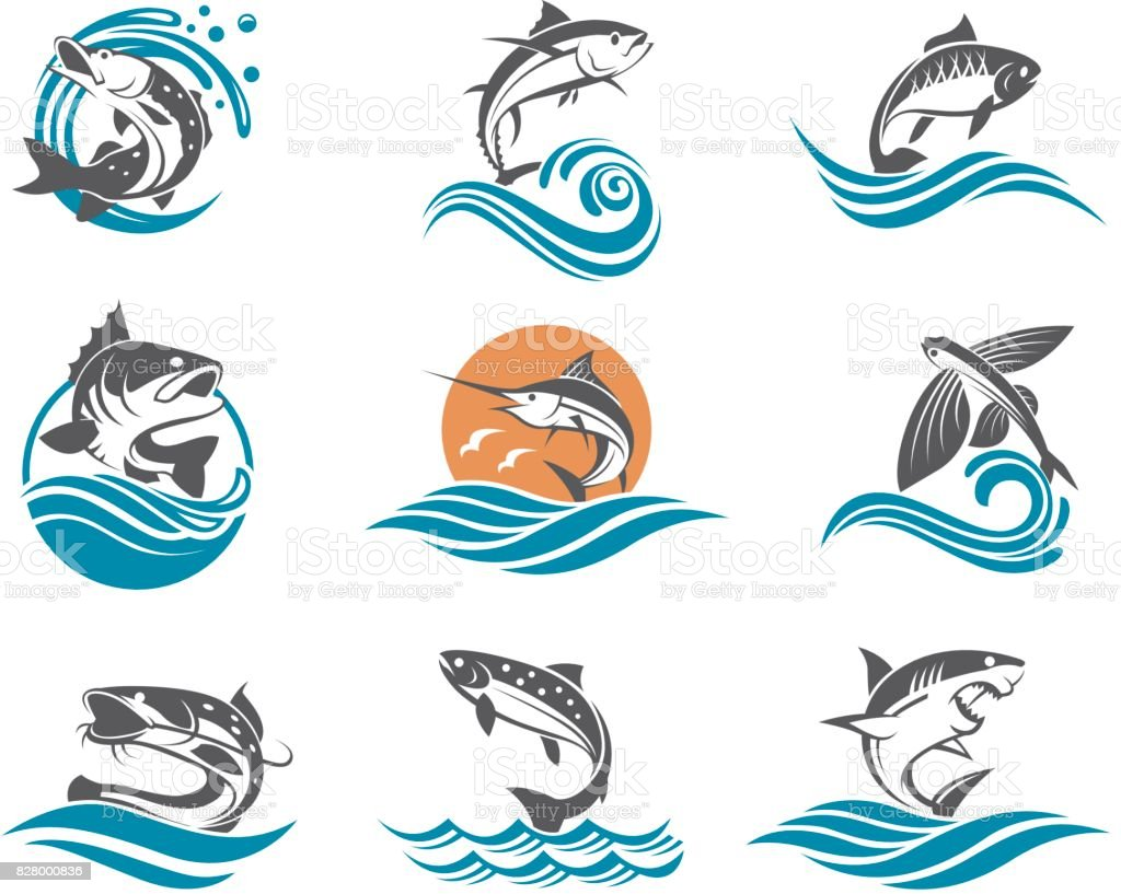 fish illustrations set vector art illustration