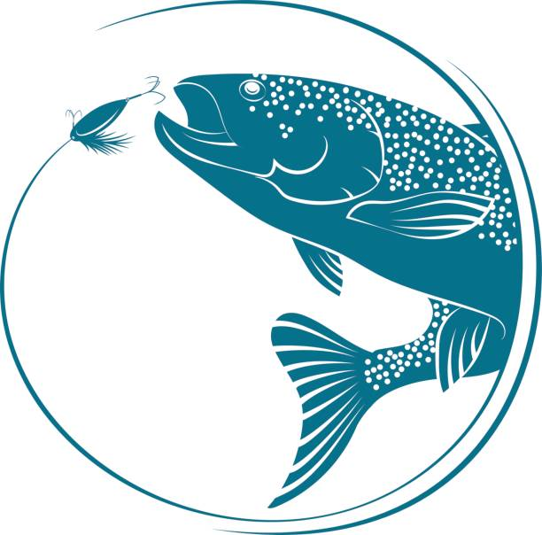 Fish jumping for bait vector vector art illustration