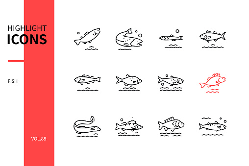 Fish - modern line design style icons set