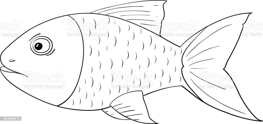 fische zeichnen comic  tier malen